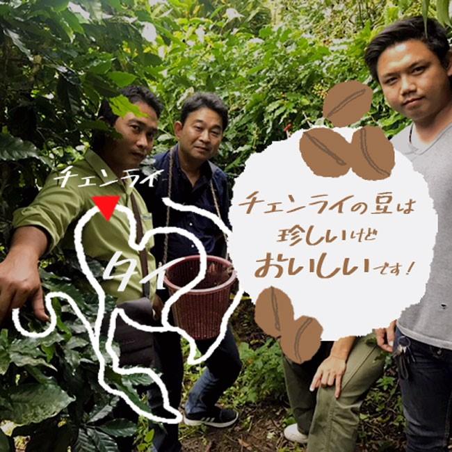 タイ産コーヒー豆